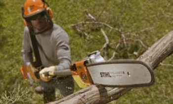 CroppedImage350210-Professional-Pole-Pruners.png